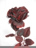 Rose bordeaux / gold ca 65cm mit Glitzereffekt